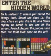 Secret World insert