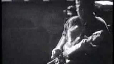 Echo & the Bunnymen - Bedbugs and Ballyhoo
