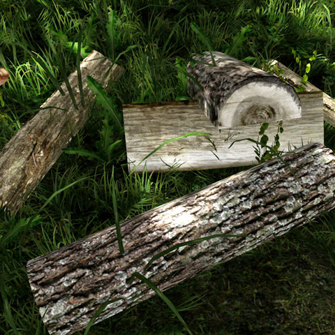 File:Logs.png