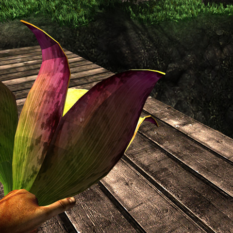 File:Bulbous fruit plant in hand.png