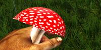 Red Poisonous Mushroom