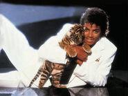 Michael jackson tiger