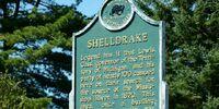 Sheldrake
