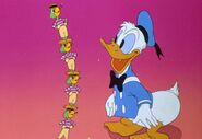 Donald and several joes
