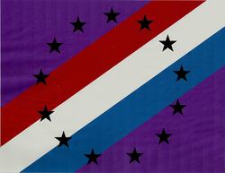 RrSA Flag0002.1