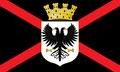 Bandera Copinsa.png