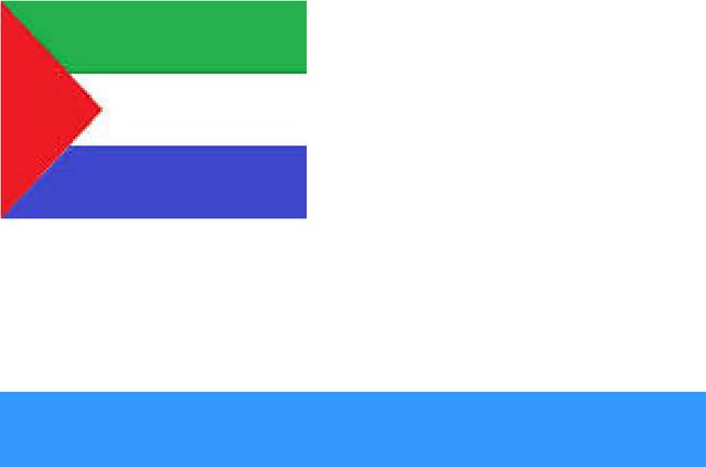 File:Viadalvian Naval Flag.png