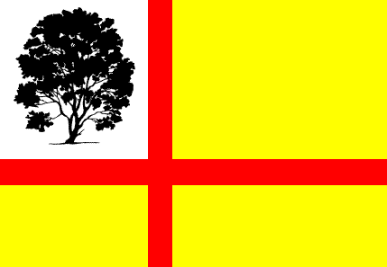 File:The Vemorian Flag.PNG