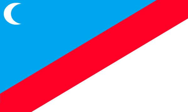File:Design 1 (6).jpgnewflag.jpg
