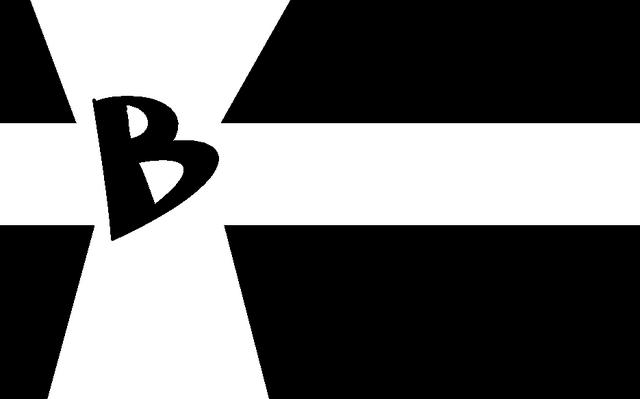 File:Botafogo Flag.PNG