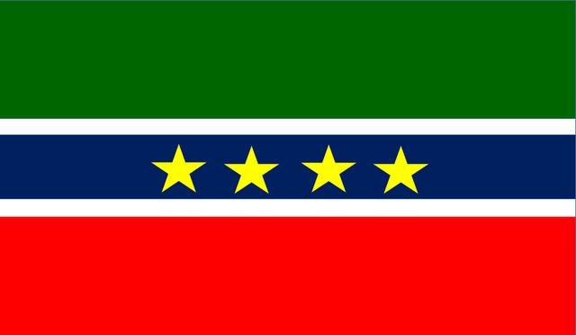 File:Bandeira República Nasseira dos Estados Unidos de Casco de Rolha.png