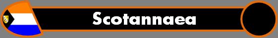 File:Scotannaea.png