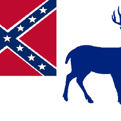 3rd State Flag of Vice