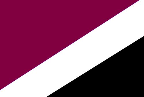 File:Flagofsnowlandtjfj.png