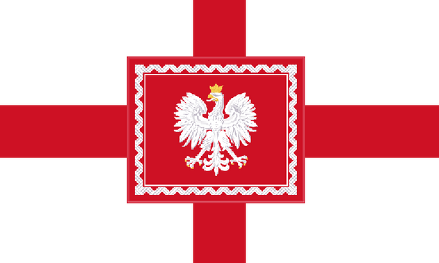 File:Domese Flag.png