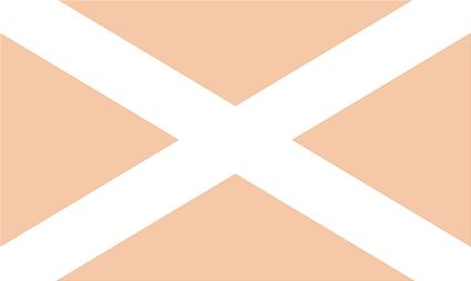 File:Old Afondale Flag.png