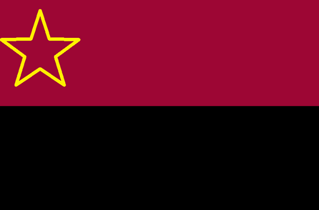 File:Possible Flag.png