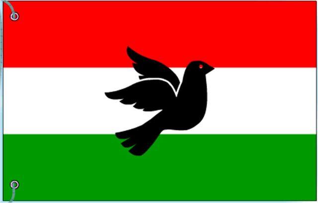 File:NEW GARGSTAN FLAG.jpg