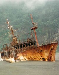 Kinei-Maru-10-Denham-Bay