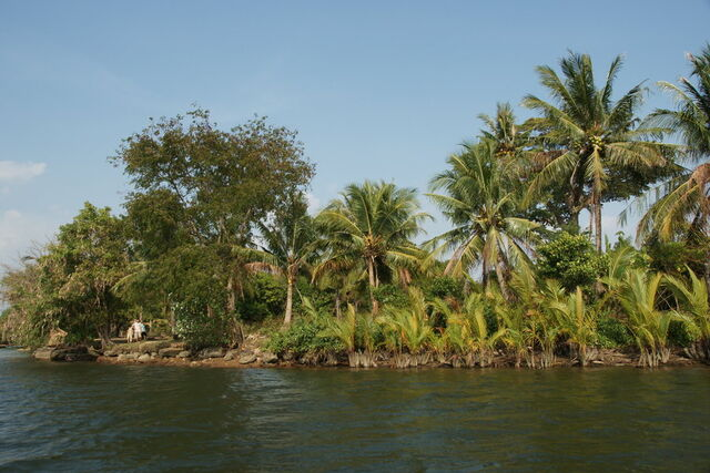 File:River scenery-dsc08492-1-.jpg