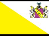 Zimlandianarmedforcesflag