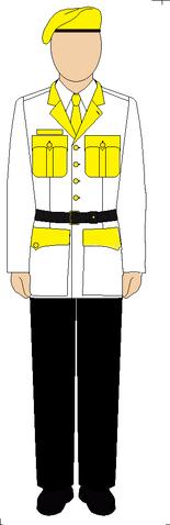 File:Uniformguard.png