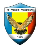 Falkens