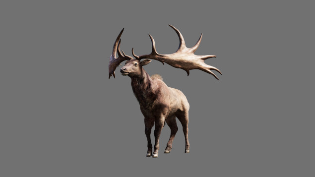 File:FCP Render Deer IrishElk BeastMaster Reveal 151204 5AM CET 1449251220-635x357.jpg