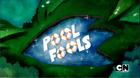 Poolfools