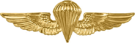 United States Navy Parachutist Badge