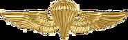 United States Navy Parachutist Badge