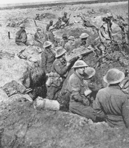 Polygon australian soldiers