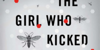 The Girl Who Kicked the Hornet's Nest (novel)