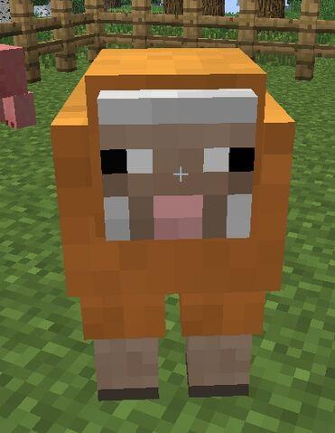 File:Orange sheep.jpg