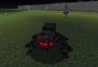 A Spider near the railway of the B Train Subway