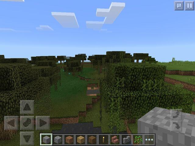 File:Swamp biome.jpg