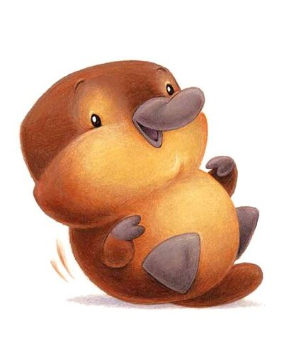 File:Cute platypus.jpg