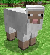 File:Sheep-ingame.png