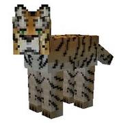 Tiger Mo Creatures