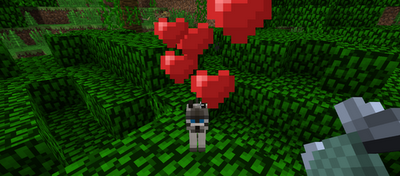 File:Tamed cat minecraft.png
