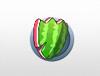 Melon Shield