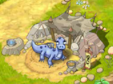Dragon-fem 5-6