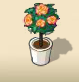 Orange Rose Tree