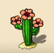 Desert cactus with an exotic blossom