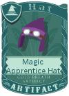Magic Apprentice Hat Dark Purple