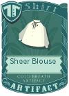 Sheer Blouse Black