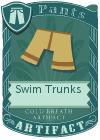 Swim Trunks Mint