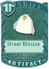 Sheer Blouse Green