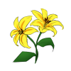 File:Lilies.png