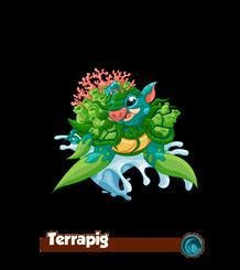Terrapig